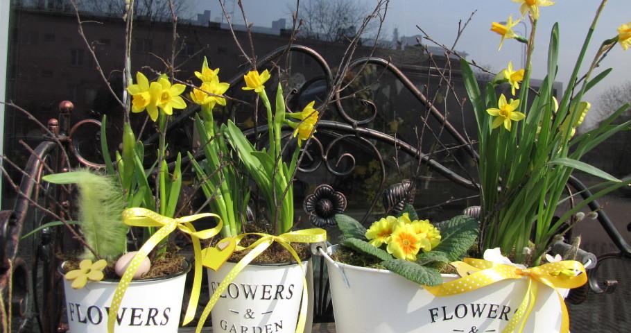 Jarní dekorace a košíky